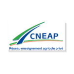 cneap-copie